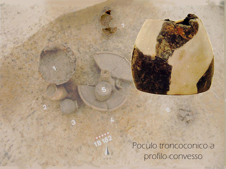Poculo troncoconico a profilo convesso