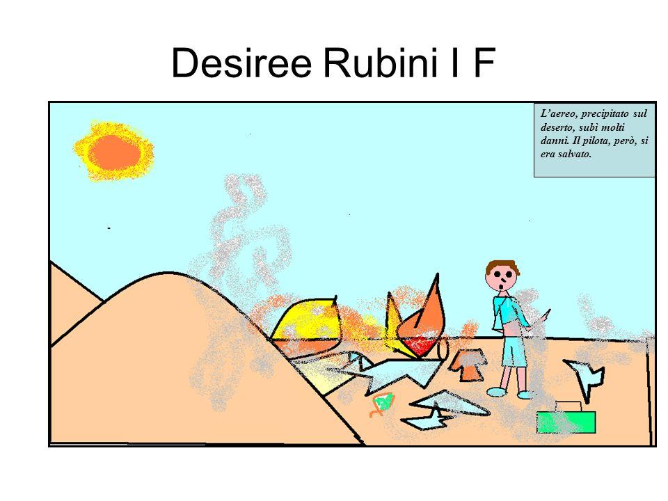 Desiree Rubini I F Laereo, precipitato sul deserto, subì molti danni.