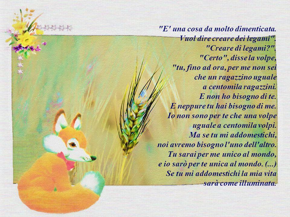 Amato LA VOLPE E IL PICCOLO PRINCIPE GR74