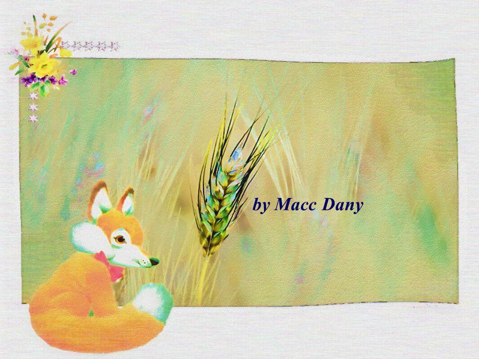 Così il piccolo principe addomesticò la volpe... E quando l'ora della partenza del piccolo principe fu vicina: