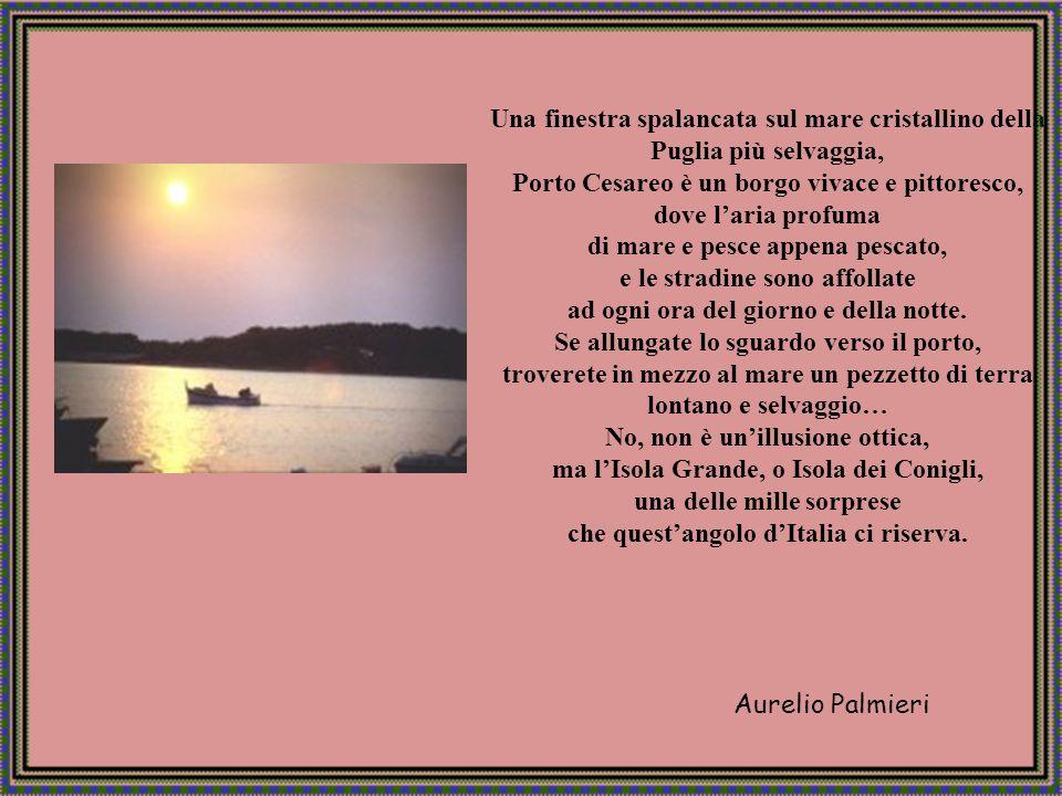 Aurelio Palmieri Mare di Porto Cesareo