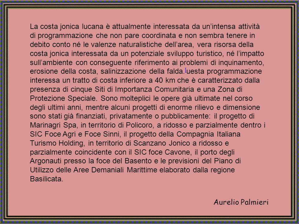 Aurelio Palmieri La foce del Fiume Sinni