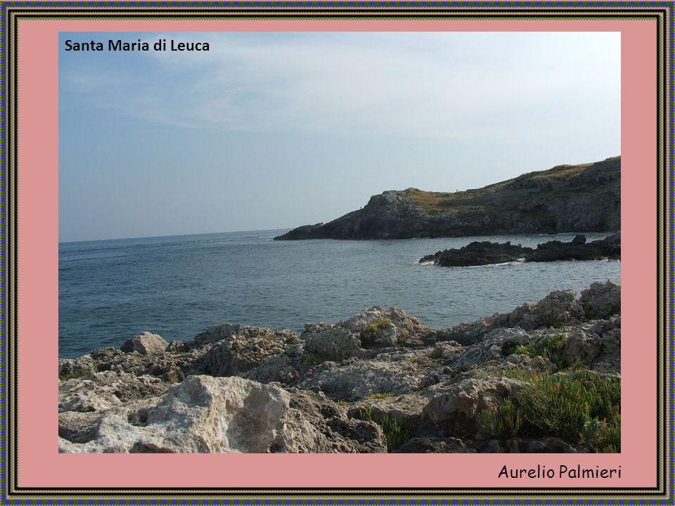 Aurelio Palmieri Situata su un lungo tratto di costa interessato dal fenomeno delle sorgenti termali.