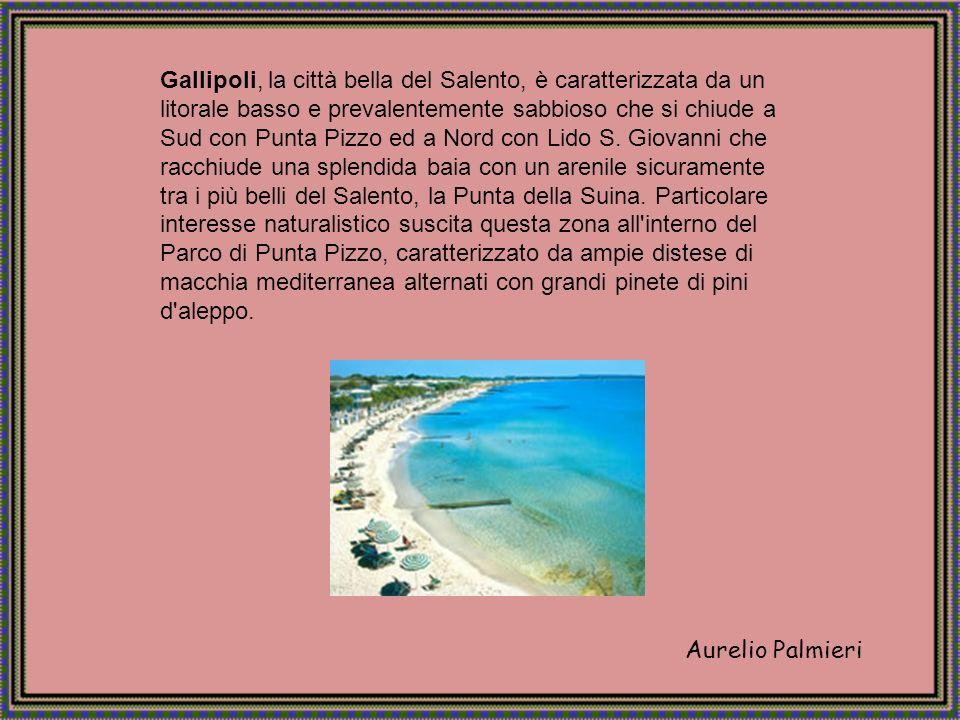 Aurelio Palmieri Gallipoli, la città bella del Salento, è caratterizzata da un litorale basso e prevalentemente sabbioso che si chiude a Sud con Punta Pizzo ed a Nord con Lido S.