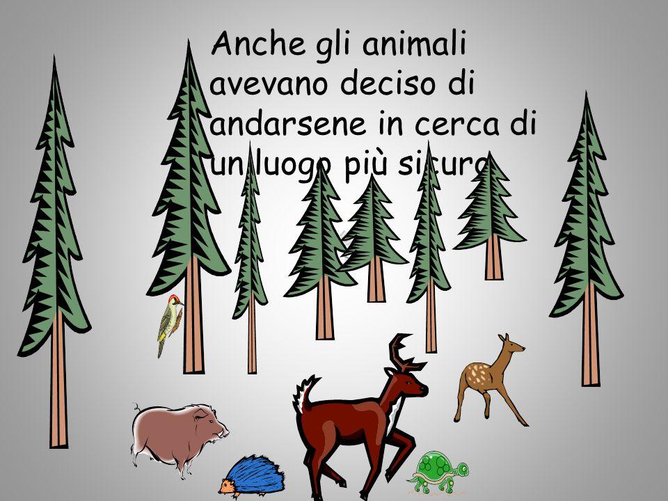 Anche gli animali avevano deciso di andarsene in cerca di un luogo più sicuro.
