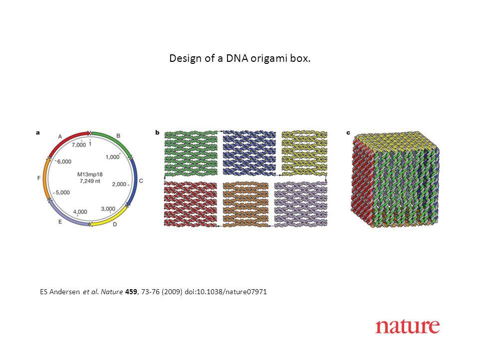 ES Andersen et al. Nature 459, 73-76 (2009) doi:10.1038/nature07971 Design of a DNA origami box.