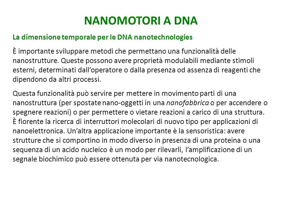 NANOMOTORI A DNA La dimensione temporale per le DNA nanotechnologies È importante sviluppare metodi che permettano una funzionalità delle nanostrutture.