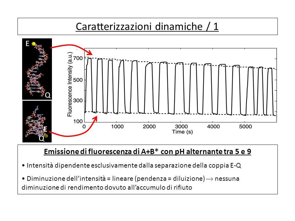 Caratterizzazioni dinamiche / 1 Emissione di fluorescenza di A+B* con pH alternante tra 5 e 9 Intensità dipendente esclusivamente dalla separazione della coppia E-Q Diminuzione dellintensità = lineare (pendenza = diluizione) nessuna diminuzione di rendimento dovuto allaccumulo di rifiuto E Q E Q