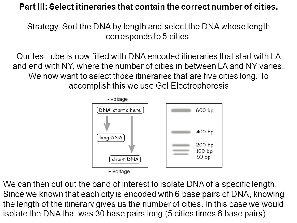 Part III: Select itineraries that contain the correct number of cities.