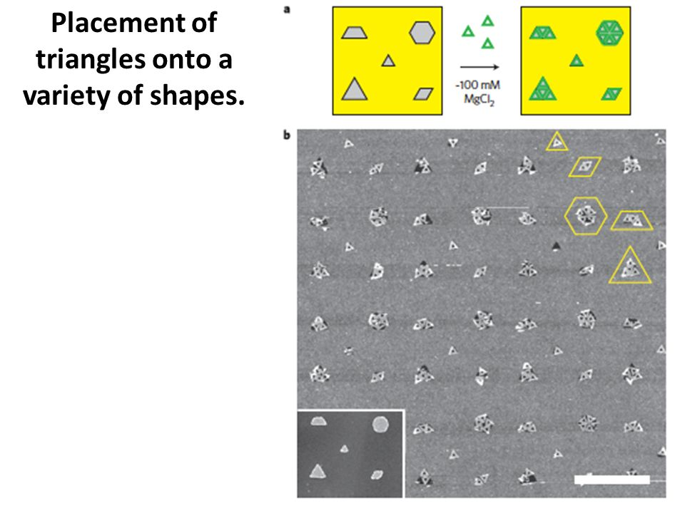 Placement of triangles onto a variety of shapes.