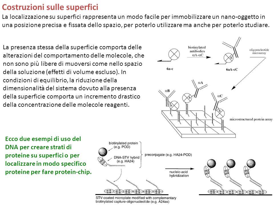Costruzioni sulle superfici La localizzazione su superfici rappresenta un modo facile per immobilizzare un nano-oggetto in una posizione precisa e fissata dello spazio, per poterlo utilizzare ma anche per poterlo studiare.