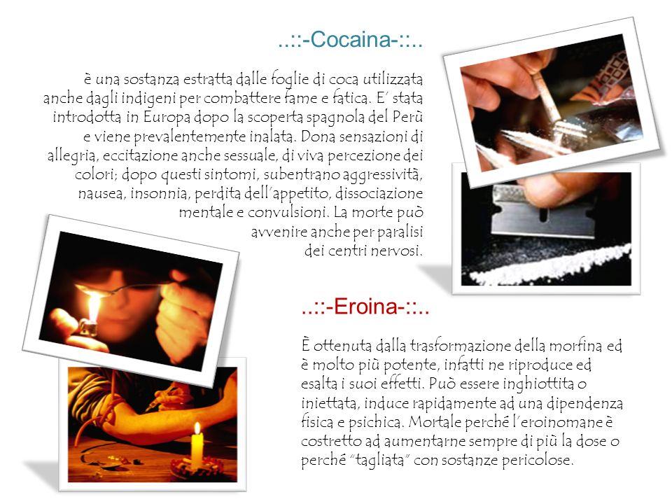 ..::-Cocaina-::.. è una sostanza estratta dalle foglie di coca utilizzata anche dagli indigeni per combattere fame e fatica. E stata introdotta in Eur