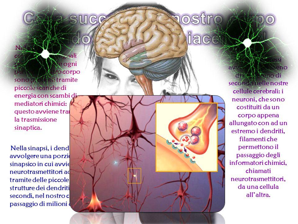 Quando proviamo piacere, vengono prodotti numerosi tipi di neurotrasmettitori, che ci donano benessere, appagamento, euforia ed energia, assieme alle tante altre sensazioni che definiamo PIACERE.