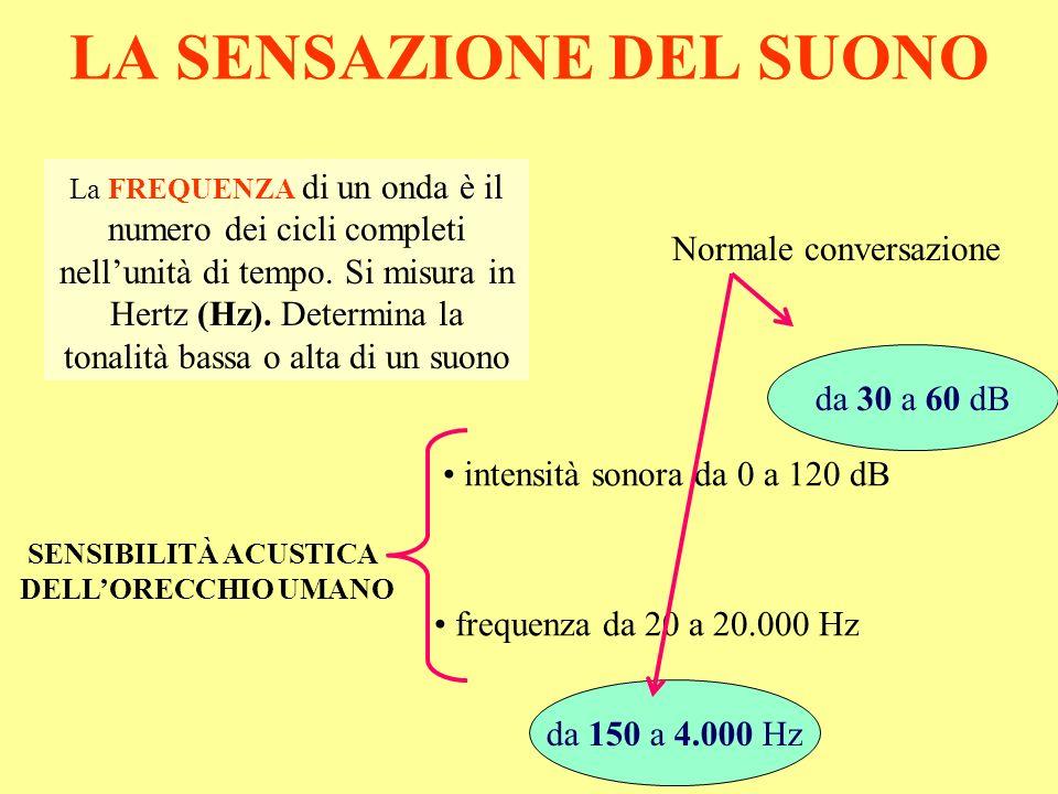 LA SENSAZIONE DEL SUONO SENSIBILITÀ ACUSTICA DELLORECCHIO UMANO La FREQUENZA di un onda è il numero dei cicli completi nellunità di tempo. Si misura i