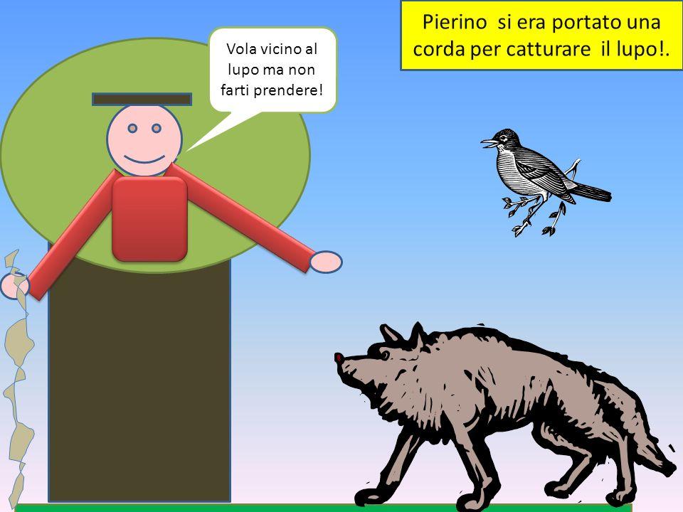 Pierino si era portato una corda per catturare il lupo!. Vola vicino al lupo ma non farti prendere!
