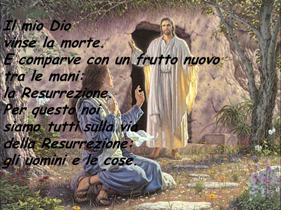 Il mio Dio vinse la morte. E comparve con un frutto nuovo tra le mani: la Resurrezione. Per questo noi siamo tutti sulla via della Resurrezione: gli u