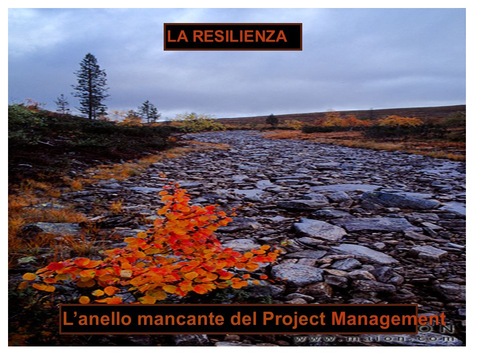 LA RESILIENZA Lanello mancante del Project Management