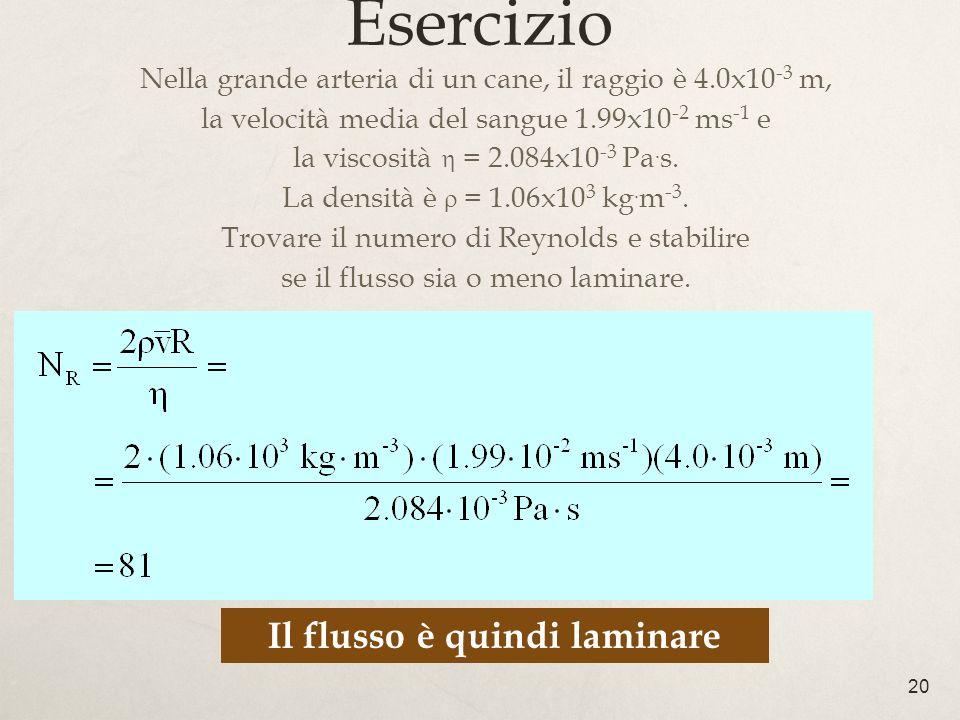 20 Esercizio Nella grande arteria di un cane, il raggio è 4.0x10 -3 m, la velocità media del sangue 1.99x10 -2 ms -1 e la viscosità = 2.084x10 -3 Pa.