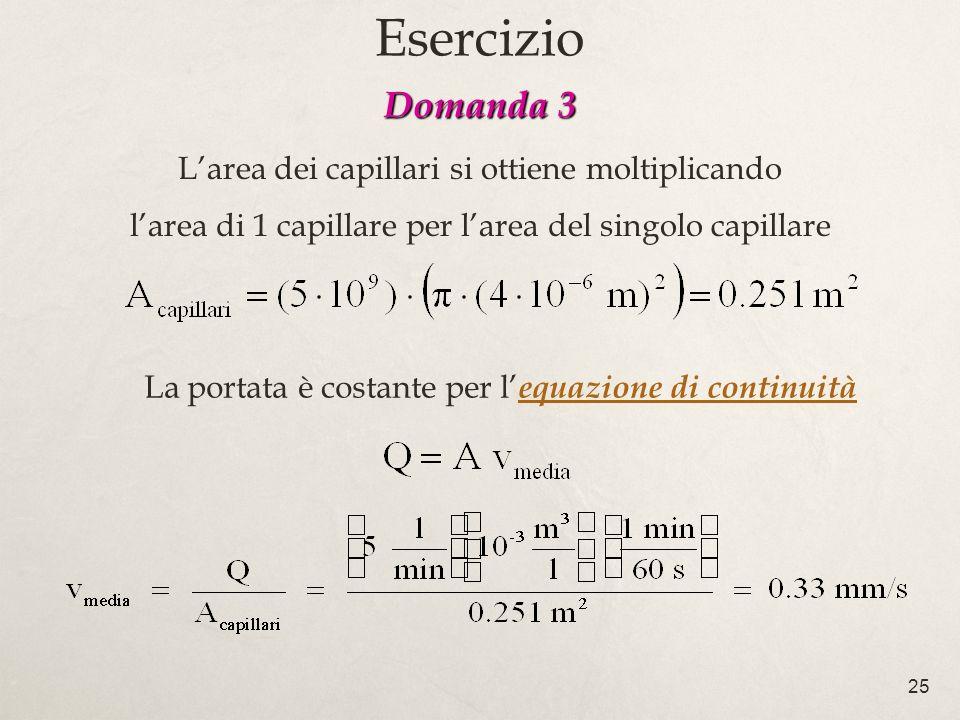 25 Larea dei capillari si ottiene moltiplicando larea di 1 capillare per larea del singolo capillare La portata è costante per l equazione di continuità Domanda 3 Esercizio