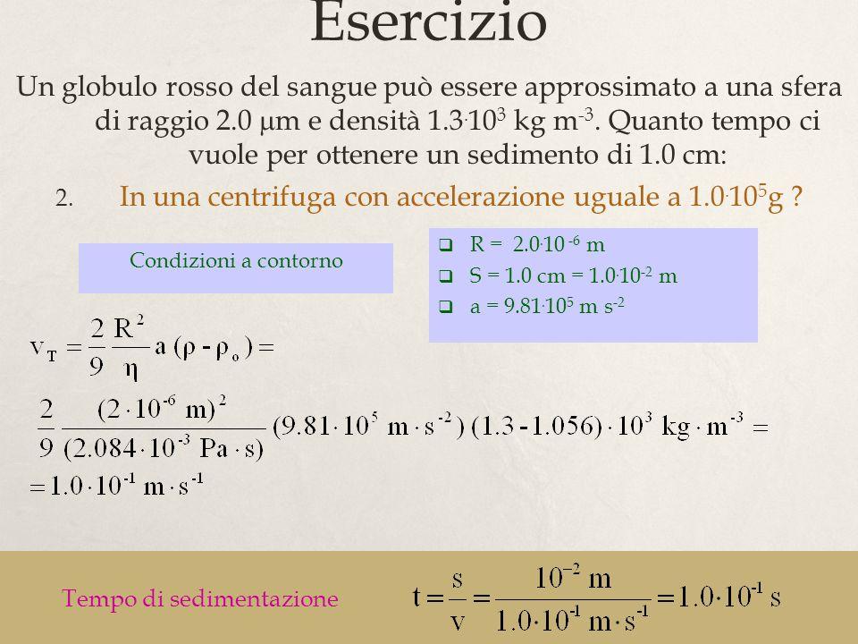 40 Esercizio Condizioni a contorno R = 2.0. 10 -6 m S = 1.0 cm = 1.0. 10 -2 m a = 9.81. 10 5 m s -2 Tempo di sedimentazione Un globulo rosso del sangu