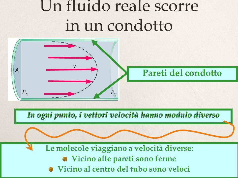 9 Un fluido reale scorre in un condotto Pareti del condotto In ogni punto, i vettori velocità hanno modulo diverso Le molecole viaggiano a velocità di