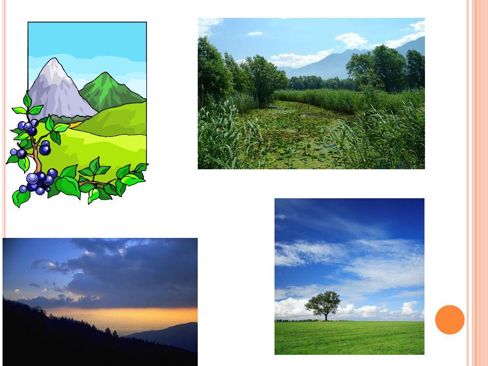 IL CLIMA In montagna il clima è di tipo Alpino con inverni freddi e con frequenti giornate di gelo.