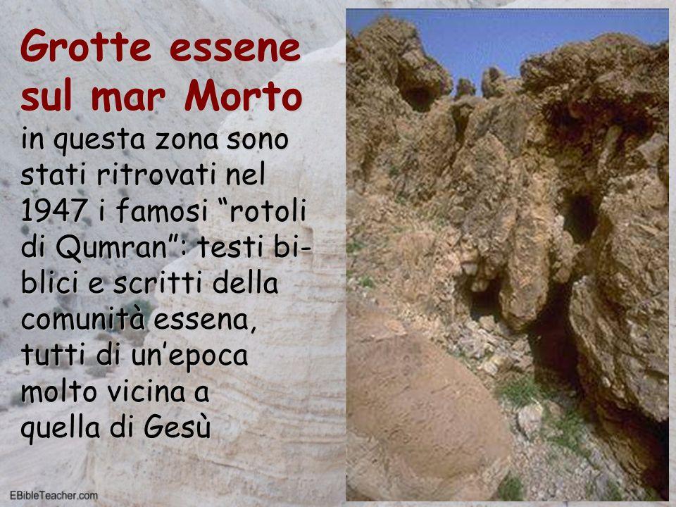 Grotte essene sul mar Morto in questa zona sono stati ritrovati nel 1947 i famosi rotoli di Qumran: testi bi- blici e scritti della comunità essena, t