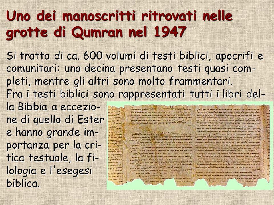Uno dei manoscritti ritrovati nelle grotte di Qumran nel 1947 Si tratta di ca. 600 volumi di testi biblici, apocrifi e comunitari: una decina presenta