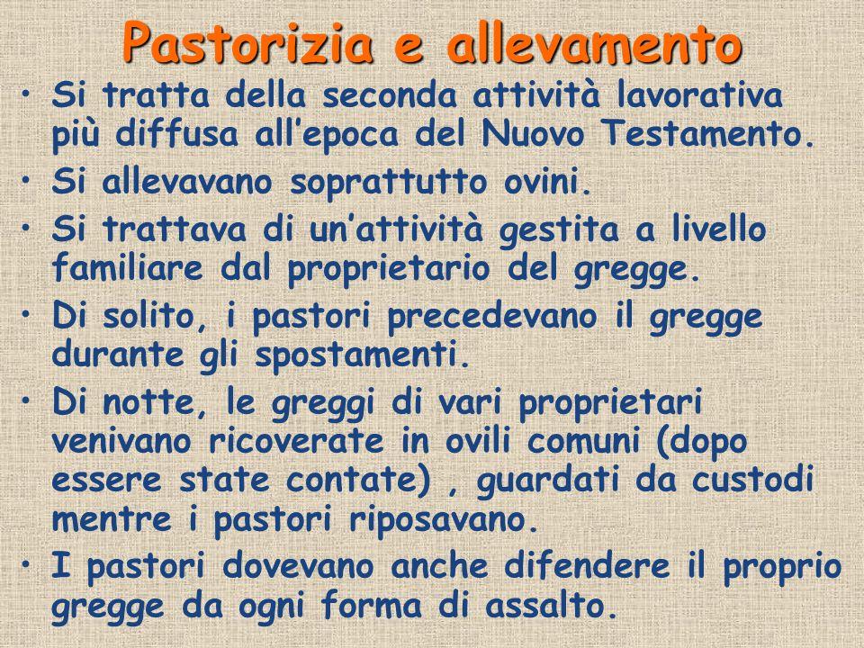 Pastorizia e allevamento Si tratta della seconda attività lavorativa più diffusa allepoca del Nuovo Testamento. Si allevavano soprattutto ovini. Si tr