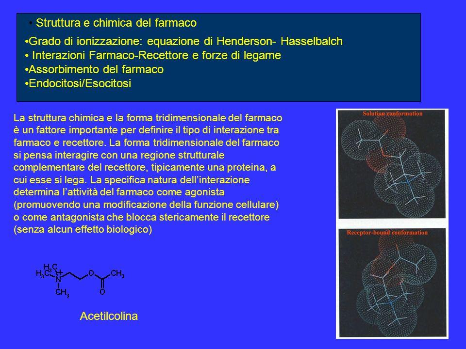 Struttura e chimica del farmaco Grado di ionizzazione: equazione di Henderson- Hasselbalch Interazioni Farmaco-Recettore e forze di legame Assorbimento del farmaco Endocitosi/Esocitosi La carica positiva dellacetilcolina (dovuta alla presenza dellazoto quaternario) interagisce con il triptofano-84 (Trp-84) e fenilalanina-330 (Phe-330) (legami ionici) Questa parte della molecola di acetilcolinesterasi viene denominata tasca aromatica Anche lamminoacido carico negativamente, acido glutammico-199 (Glu-199), interagisce mediante legame ionico con lacetilcolina