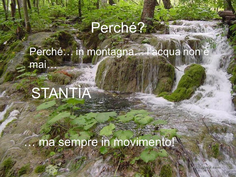 Perché? Perché… in montagna… lacqua non è mai… STANTÌA … ma sempre in movimento!