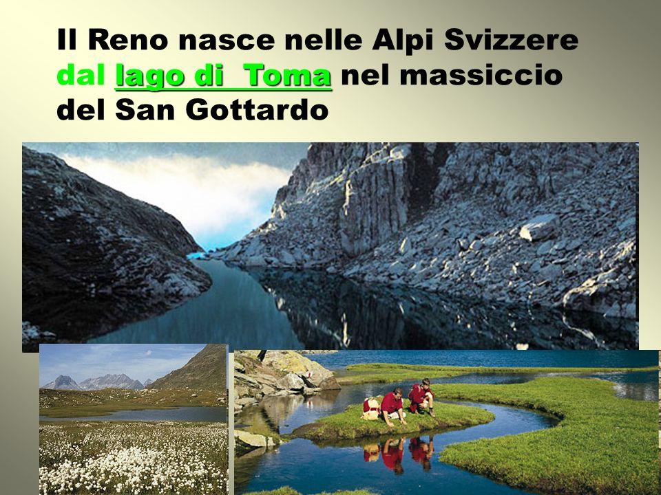 IL BACINO IDROGRAFICO Stati/regioni attraversati: Svizzera Austria Liechtenstein Francia Germania Paesi Bassi (Olanda)