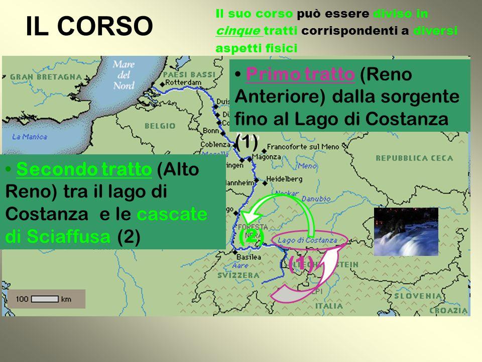 Il Reno nasce nelle Alpi Svizzere dal l ll lago di Toma nel massiccio del San Gottardo