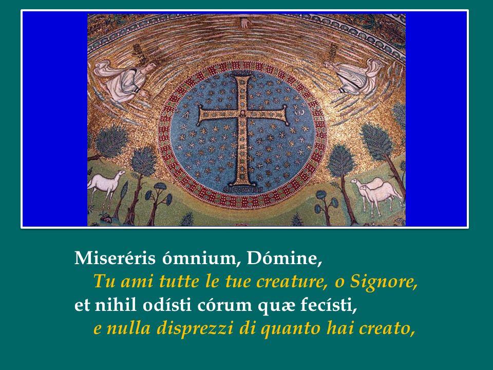 Oggi, Mercoledì delle Ceneri, iniziamo un nuovo cammino quaresimale, un cammino che si snoda per quaranta giorni e ci conduce alla gioia della Pasqua del Signore, alla vittoria della Vita sulla morte.