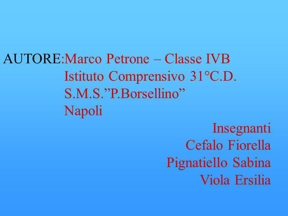 AUTORE:Marco Petrone – Classe IVB Istituto Comprensivo 31°C.D. S.M.S.P.Borsellino Napoli Insegnanti Cefalo Fiorella Pignatiello Sabina Viola Ersilia