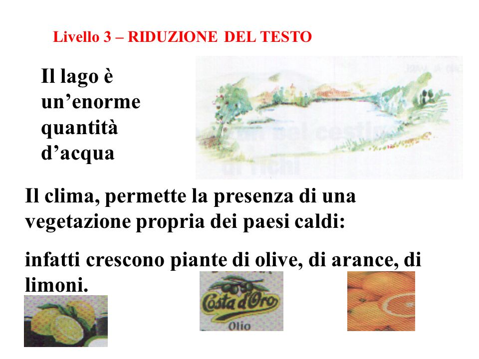 Livello 3 – RIDUZIONE DEL TESTO Il lago è unenorme quantità dacqua Il clima, permette la presenza di una vegetazione propria dei paesi caldi: infatti crescono piante di olive, di arance, di limoni.