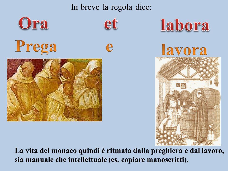 Benedetto stabilì delle regole per regolare la vita dei monaci e li raccolse in un libro chiamato