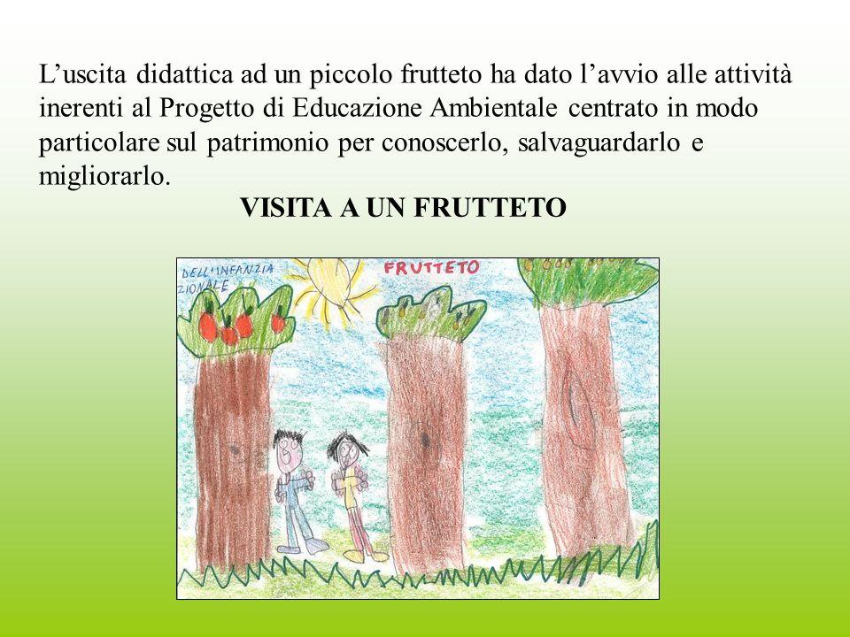 Luscita didattica ad un piccolo frutteto ha dato lavvio alle attività inerenti al Progetto di Educazione Ambientale centrato in modo particolare sul patrimonio per conoscerlo, salvaguardarlo e migliorarlo.