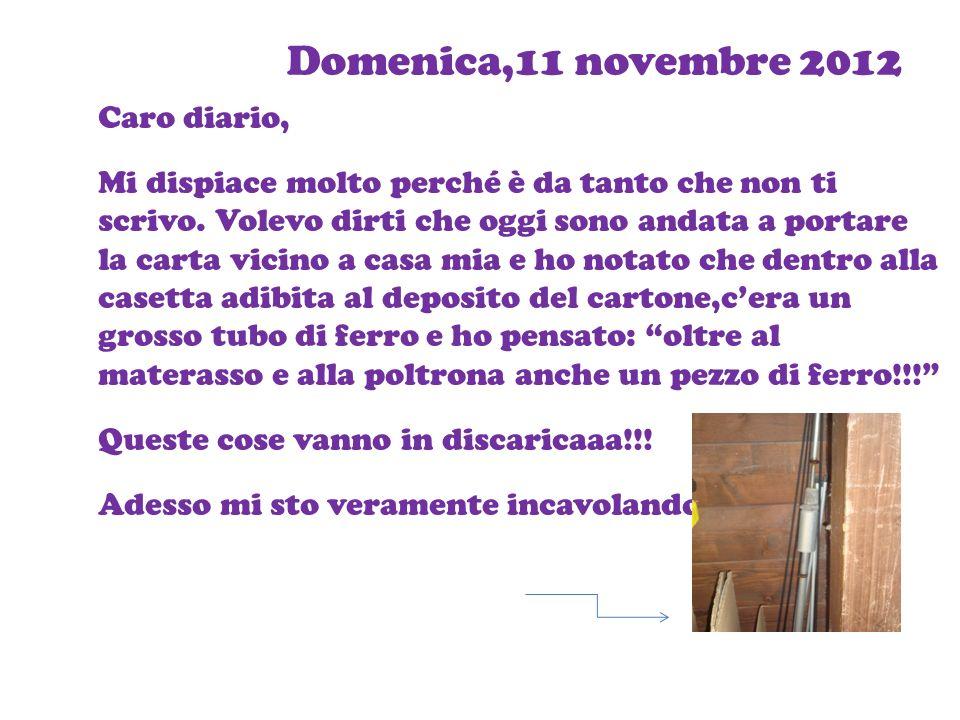 Domenica,11 novembre 2012 Caro diario, Mi dispiace molto perché è da tanto che non ti scrivo. Volevo dirti che oggi sono andata a portare la carta vic