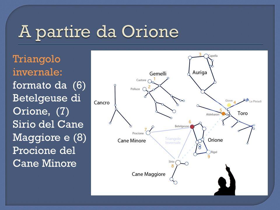 Triangolo invernale: formato da (6) Betelgeuse di Orione, (7) Sirio del Cane Maggiore e (8) Procione del Cane Minore