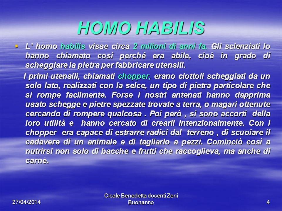 27/04/2014 Cicale Benedetta docenti Zeni Buonanno 5 HOMO ERECTUS Circa 1,5 milioni di anni fa comparve in Africa l homo erectus.