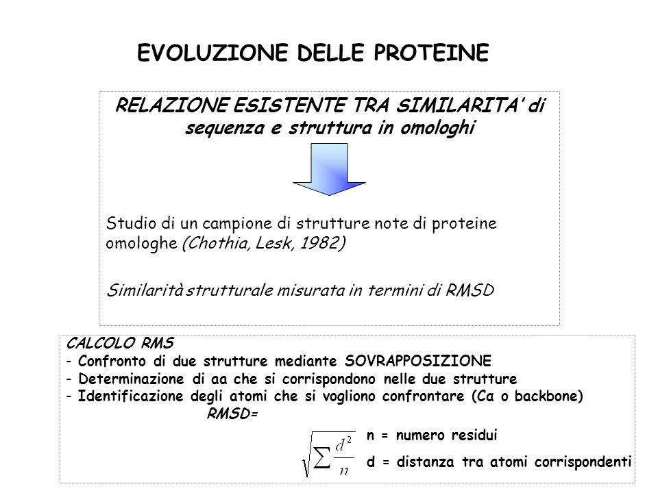 EVOLUZIONE DELLE PROTEINE RELAZIONE ESISTENTE TRA SIMILARITA di sequenza e struttura in omologhi Studio di un campione di strutture note di proteine o