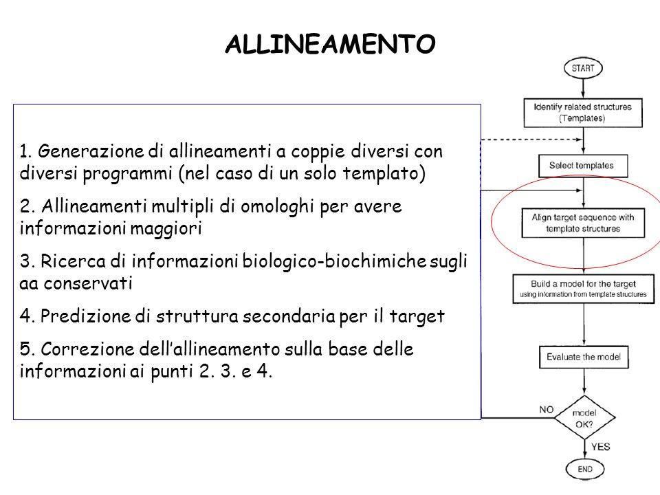 ALLINEAMENTO 1. Generazione di allineamenti a coppie diversi con diversi programmi (nel caso di un solo templato) 2. Allineamenti multipli di omologhi