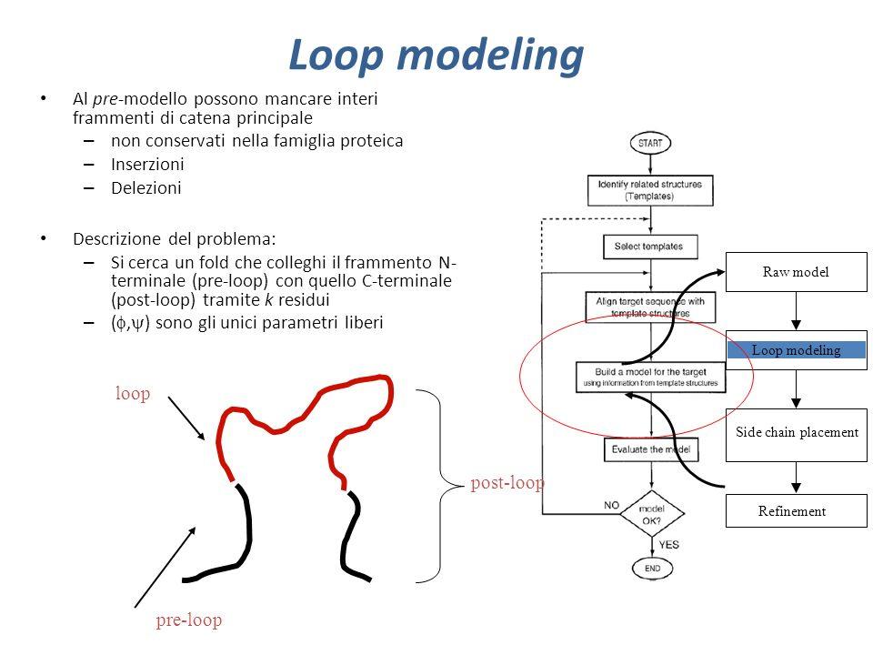 Loop modeling Al pre-modello possono mancare interi frammenti di catena principale – non conservati nella famiglia proteica – Inserzioni – Delezioni D