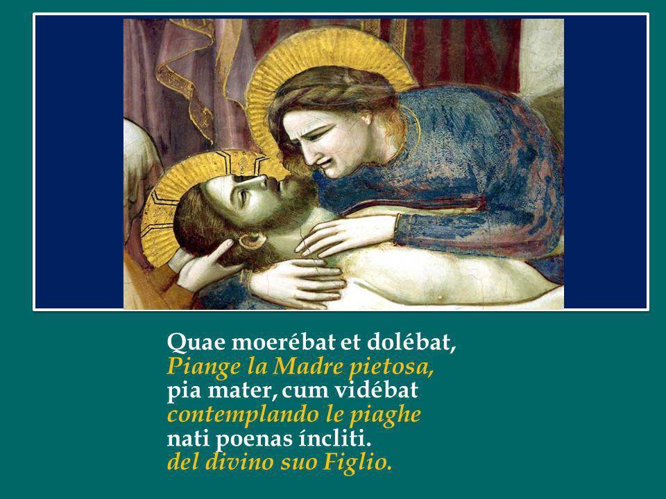 Quae moerébat et dolébat, Piange la Madre pietosa, pia mater, cum vidébat contemplando le piaghe nati poenas íncliti.
