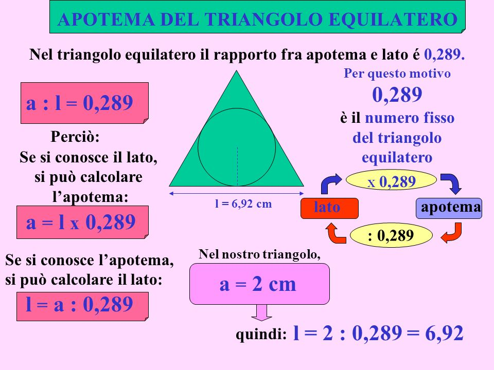 APOTEMA DEL TRIANGOLO EQUILATERO l = 6,92 cm Nel triangolo equilatero il rapporto fra apotema e lato é 0,289. a : l = 0,289 Per questo motivo 0,289 è