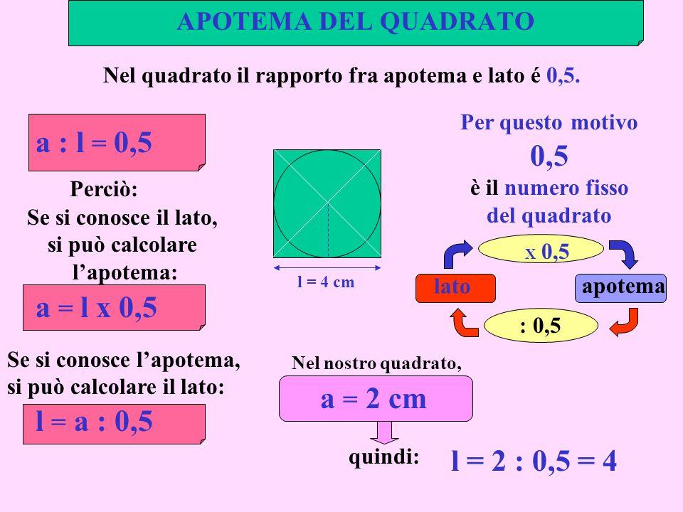 APOTEMA DEL QUADRATO l = 4 cm Nel quadrato il rapporto fra apotema e lato é 0,5. a : l = 0,5 Per questo motivo 0,5 è il numero fisso del quadrato Nel