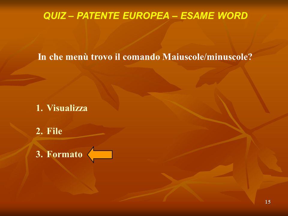 15 QUIZ – PATENTE EUROPEA – ESAME WORD In che menù trovo il comando Maiuscole/minuscole? 1.Visualizza 2.File 3.Formato