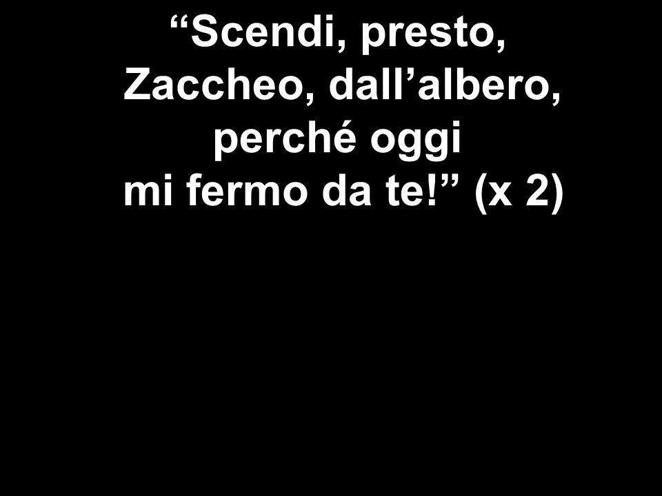 Scendi, presto, Zaccheo, dallalbero, perché oggi mi fermo da te! (x 2)