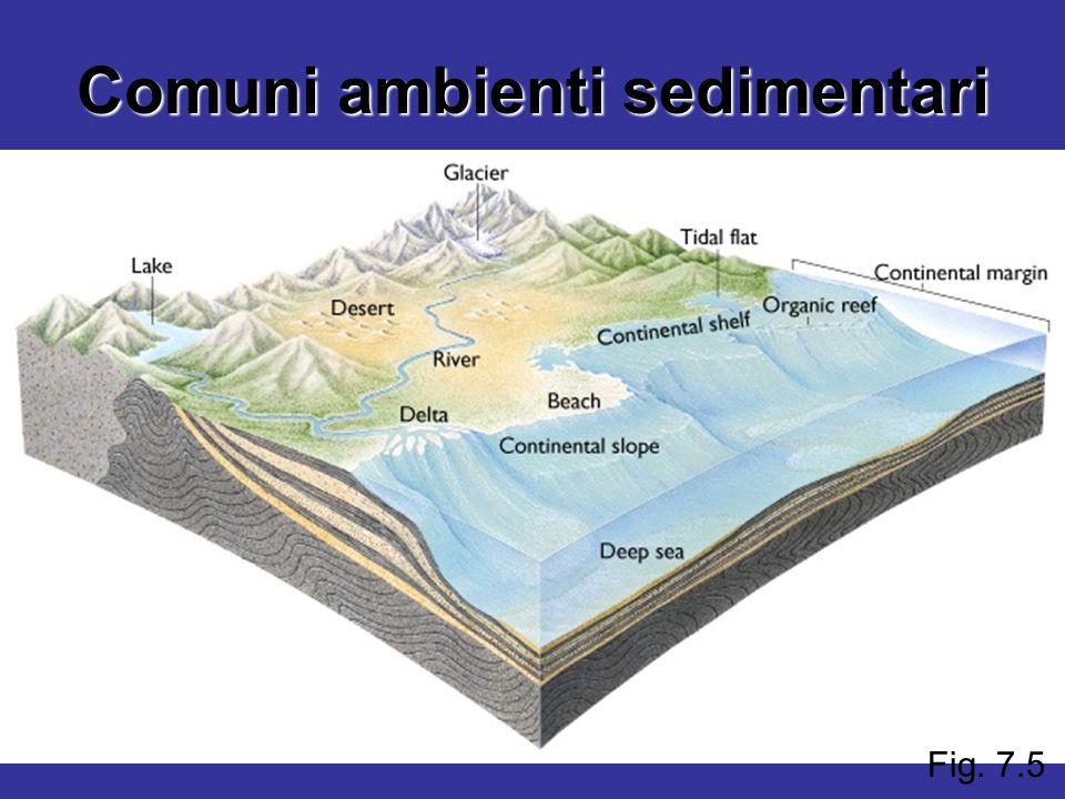 Fig. 7.5 Comuni ambienti sedimentari